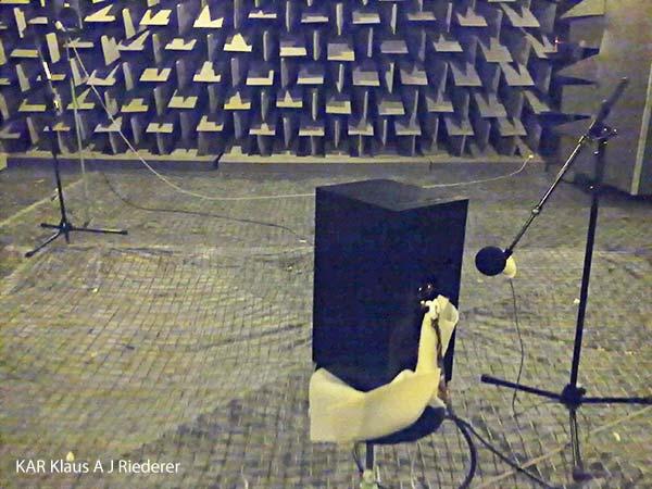 Kaiutinmittaukset, MikroBitti, 01/2011
