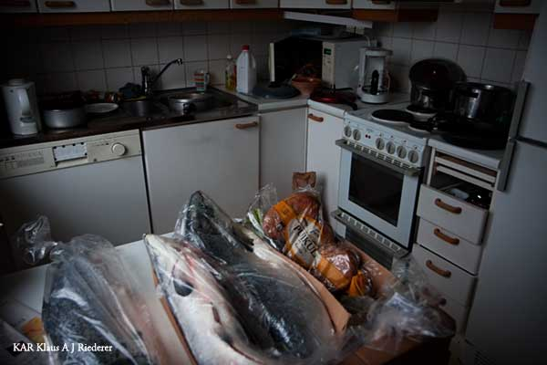 KAR avoimet ovet 12/2009