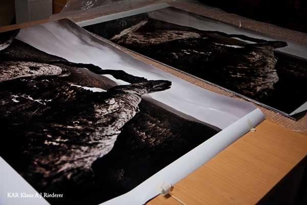 Alumiinikomposiittipohjustus Juha Metsolle 11/2009